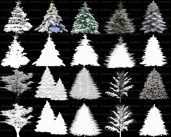 FREE SNOWY TREES