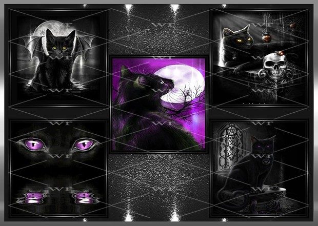 ~ BLACK CAT WALL ART ~