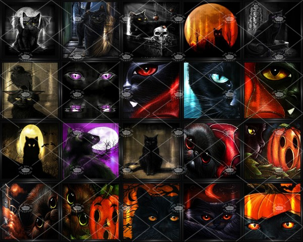 "OLDER COLLECTION "" THE BLACK CAT WALL ART """