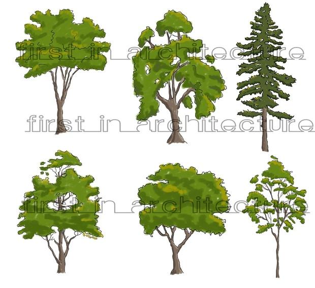 Sketchy Trees 01 PSD