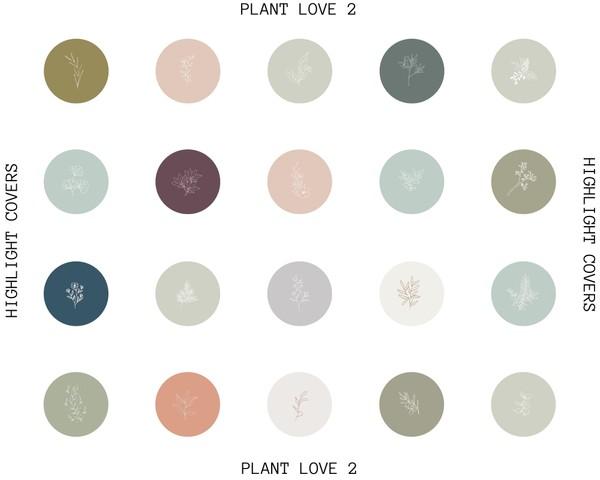 PLANT LOVE 2