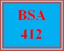 BSA 412 Week 1 Individual Use Case Diagram