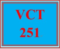 VCT 251 Week 1 Individual: Graphic Icon