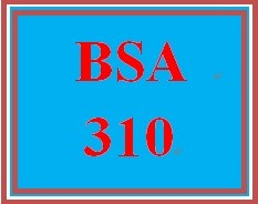 BSA 310 Week 2 Individual: Business Influences Assignment