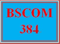 BSCOM 384 Week 5 Internet-Based Marketing Blog
