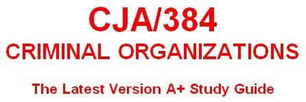 CJA 384 Week 4 Organized Crime Group Analysis