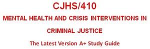 CJHS 410 Week 4 Program Report