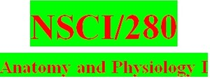 NSCI 280 Week 5 Anatomy & Physiology Revealed Worksheets