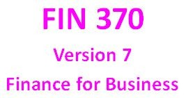 FIN 370 Week 5 Learning Team Integrative Problems and Virtual Organization Strategy Paper