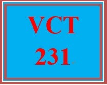 VCT 231 Week 5 Revised Individual: Final Company Video Project