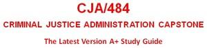 CJA 484 Week 4 Courtroom Standards Analysis