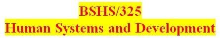 BSHS 325 Week 5 Macro Systems Paper