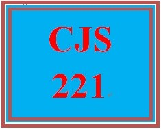 CJS 221 Week 1 Group Discussion Summary