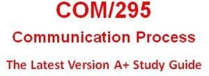 COM 295 Week 1 Communication Process