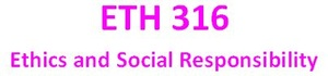 ETH 316 Week 5 EthicsGame Simulation Worksheet
