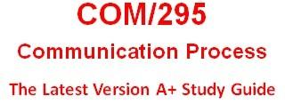 COM 295 Week 4 Knowledge Check