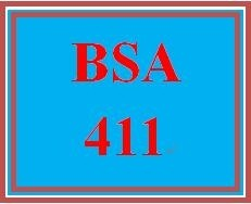 BSA 411Week 4 Individual User Interface