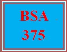 BSA 375 Entire Course