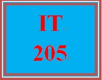 IT 205 Week 1 Individual Develop an Action Plan for Developing Foundational IT