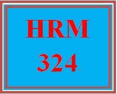 HRM 324 Week 3 Candidate Analysis