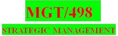 MGT 498 Week 5 Learning Team Strategic Plan Paper