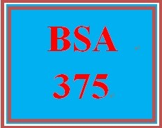 BSA 375 Week 5 Individual Training and Support Paper or Podcast