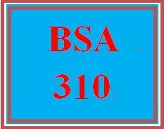 BSA 310 Week 2 Learning Team: Bubble Films Task List