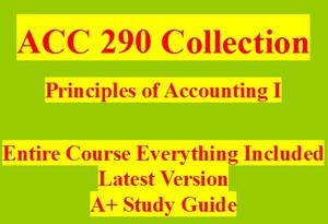 ACC 290 Week 5 WileyPLUS Final Examination