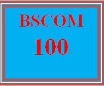 BSCOM 100 Week 3 Small Team Experiences Paper