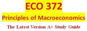 ECO 372 Week 1 Team Charter