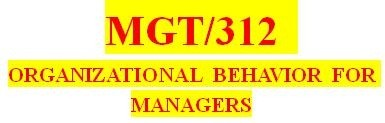 MGT 312 Entire Course