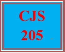 CJS 205 Week 2 Interview Approaches & Strategies Presentation
