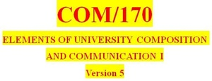 COM 170 Week 3 Thesis and Outline