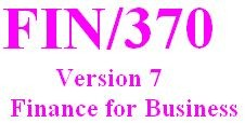 FIN 370 Week 4 Learning Team - Company Analysis Part III