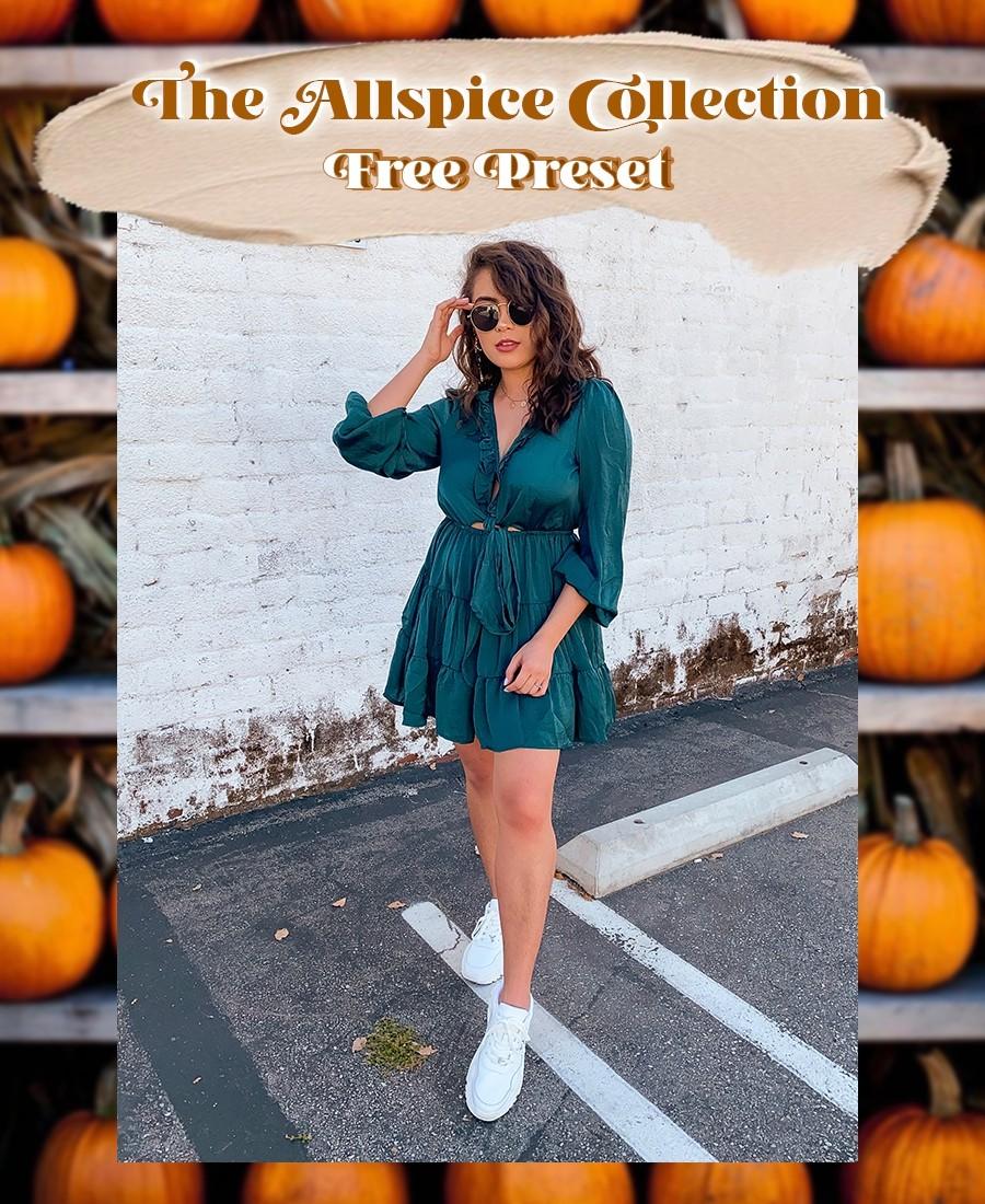 Allspice Fall Preset Collection x FREE PRESET!