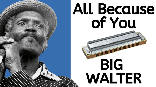 All Because of You (Big Walter Horton)