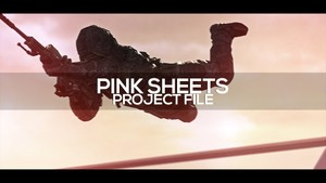 Pink $heets #RedERC - Project File
