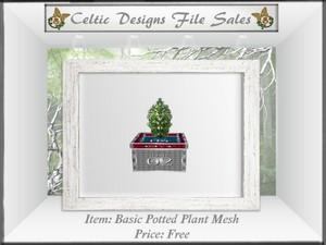 CD Basic Potted Plant Mesh