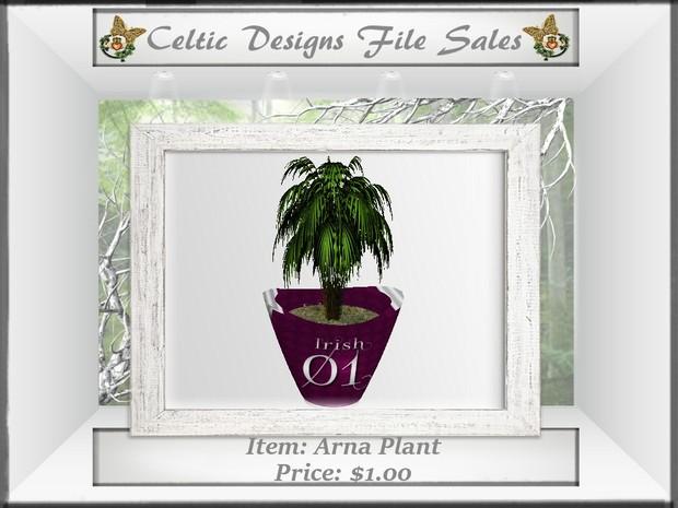 CD Arna Plant