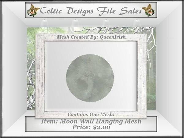 CD Moon Wall Hanging Mesh