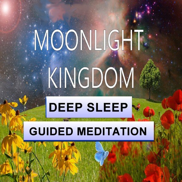 Moonlight kingdom sleep meditation