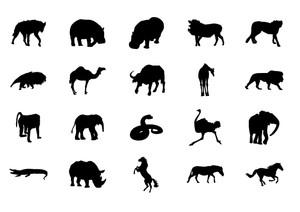 Animals Volume 3