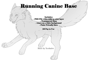 Running Canine Base
