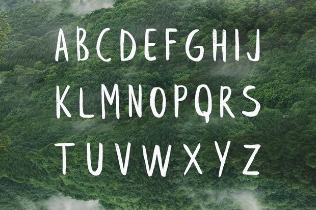 Leafy Etended Brush Font