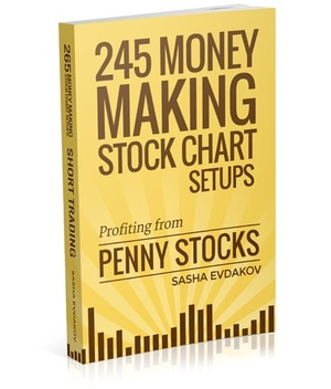 245 Money Making Stock Charts: Profiting from Penny Stock