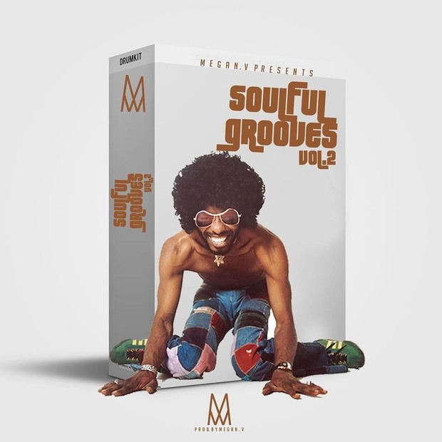 soulful Grooves Rare Sample Pack Vol 2