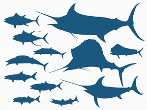 Offshore Gamefish Vector Pack
