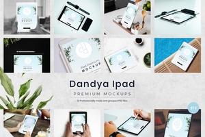 Dandya iPad Mockups