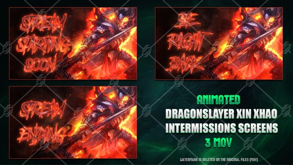 ✅🎞️DRAGONSLAYER XIN ZHAO - ANIMATED INTERMISSIONS SCREENS