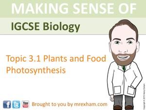 IGCSE Biology - Photosynthesis Presentation